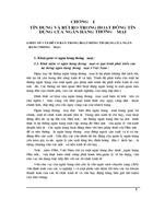 Thực trạng tín dụng và rủi ro tín dụng tại ngân hàng nông nghiệp & phát triển Hà Nội