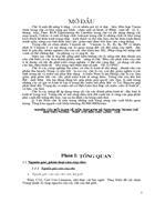 Xác định hàm lượng Tanin theo phương pháp Leventhal