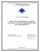 Phân tích tình hình tài chính tại công ty TNHH dầu khí MeKong