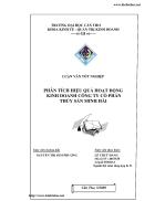 Phân tích hiệu quả hoạt động kinh doanh Công ty cổ phần thủy sản Minh Hải