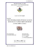 Phân tích hoạt động tín dụng tại Ngân Hàng đầu tư và phát triển chi nhánh Cà Mau BIDV Cà Mau