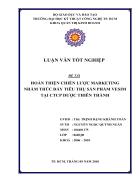 Hoàn thiện chiến lược Marketing nhằm thúc đẩy tiêu thụ sản phẩm Vesim tại CTCP Dược Thiên Thành