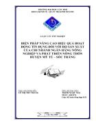 Biện pháp nâng cao hiệu quả hoạt động tín dụng đối với hộ sản xuất của chi nhánh NHNN PTNT Huyện Mỹ Tú Sóc Trăng