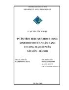 Phân tích hiệu quả hoạt động kinh doanh của ngân hàng thương mại cổ phần Sài Gòn