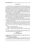 Kế toán bán hàng và xác định kết quả bán hàng tại công ty cổ phần Ngọc Anh