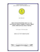 Phân tích tình hình cho vay tại Ngân hàng nông nghiệp và phát triển nông thôn huyện Châu Thành