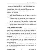 Báo cáo thực tập tổng hợp tại công ty tnhh thương mại tổng hợp thiên hương