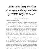 Hoàn thiện công tác bố trí và sử dụng nhân lực tại Công ty TNHH BBQ Việt Nam