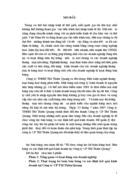 Tổ chức công tác Kế toán Hàng hóa - Bán hàng và xác định Kết quả Kinh doanh tại Công ty Cổ phần Thương mại Thiên Quang