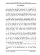 Bản Báo cáo tổng hợp về TCT Cổ phần Rượu Bia NGK Hà Nội
