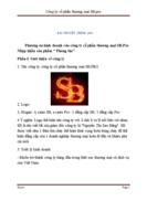 Phương án kinh doanh của công ty cổ phần thương mại SB Pro Nhập khẩu sản phẩm Phòng the